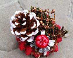 Ornament organic 3