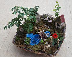 Grădină miniaturală 1 - poza 1