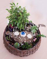 Grădină miniaturală 6