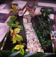 Grădină miniaturală 11